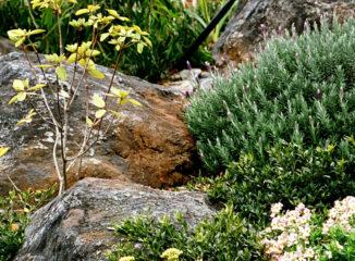 Natural looking rock garden