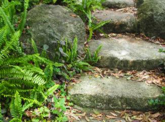 garden stone steps